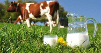 про молоко
