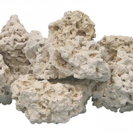 сухой рифовый камень