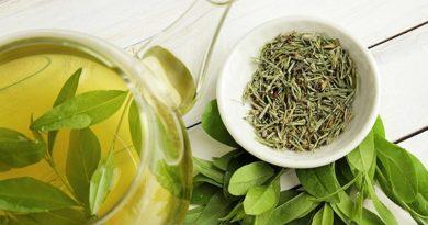 властивості зеленого чаю